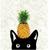 Ananas l'aile de Pluie\Sable