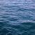 Waterclaw135