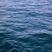Waterclaw135's avatar