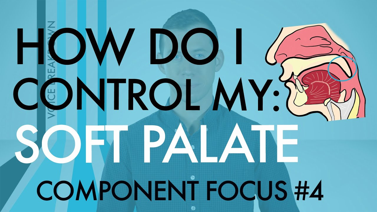 "Component Focus #4 - ""How Do I Control My Soft Palate?"" - Voice Breakdown"