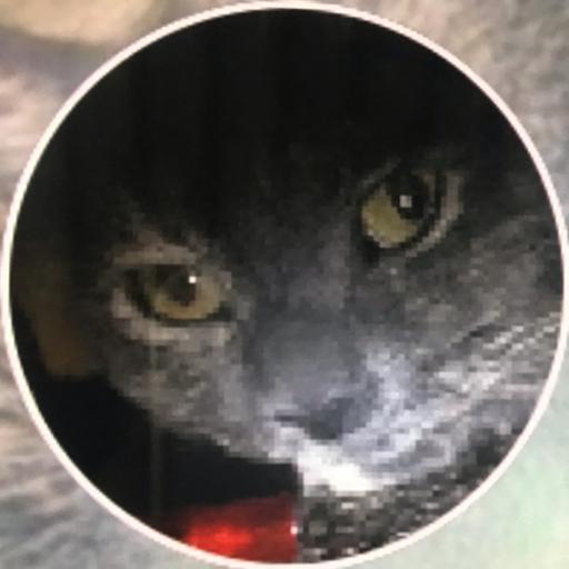 The Cat Showz & Gaming's avatar