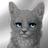Путанница КВ's avatar