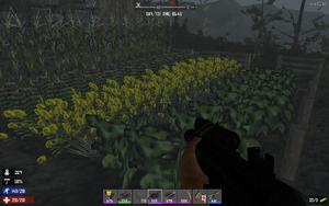 Farming-fullgrown.png