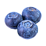 FoodCropBlueberries.png