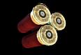 ShotgunShell.png