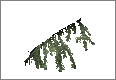 PineBranch04.png