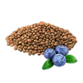 BlueberrySeed.png