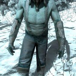 Frigid Hunter