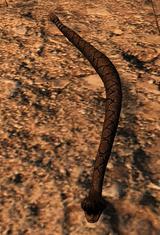 Rattlesnake.png