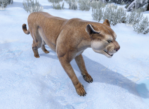 Mountain Lion.png