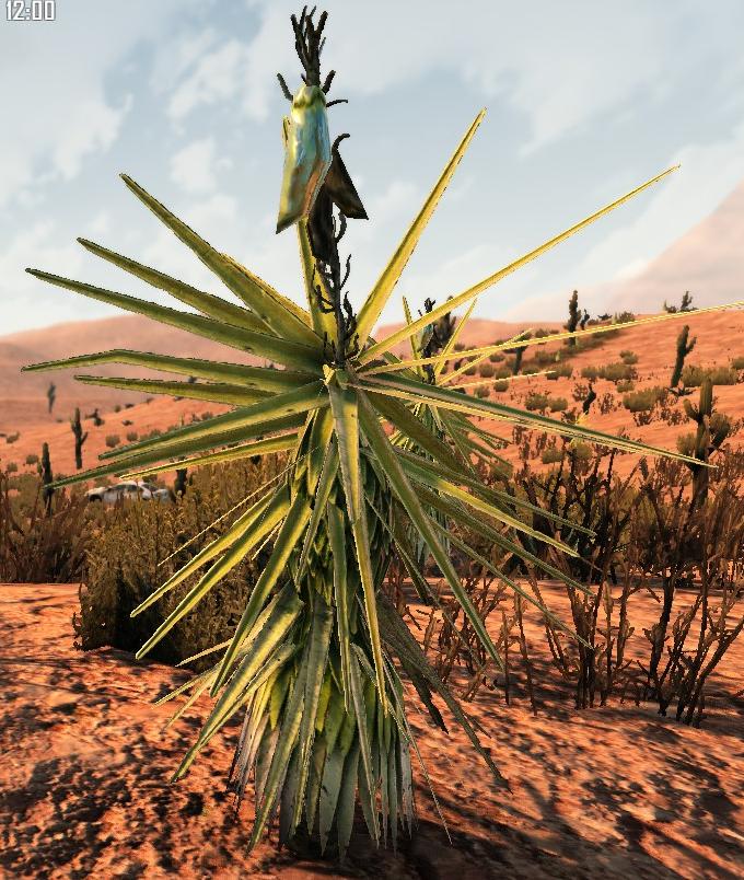 7dtd yucca plant.png