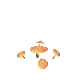 MushroomPlant.png