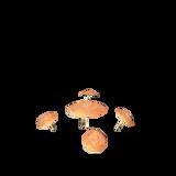 MushroomPlant.png