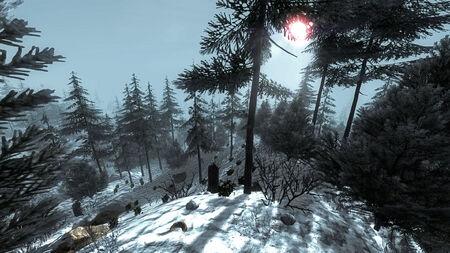SnowyForestBiome.jpg