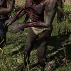 Nude Walker