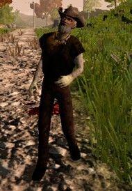 Zombie Comboy.jpg
