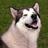DDPATbot's avatar