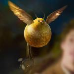 Серж Колдовстворец's avatar