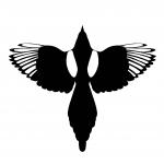 Falcon 49