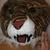 Tiger082762