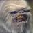 Wookiee93's avatar