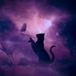 Мятная Шерстка's avatar