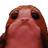 Porg009's avatar