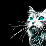 The incandescent cat's avatar