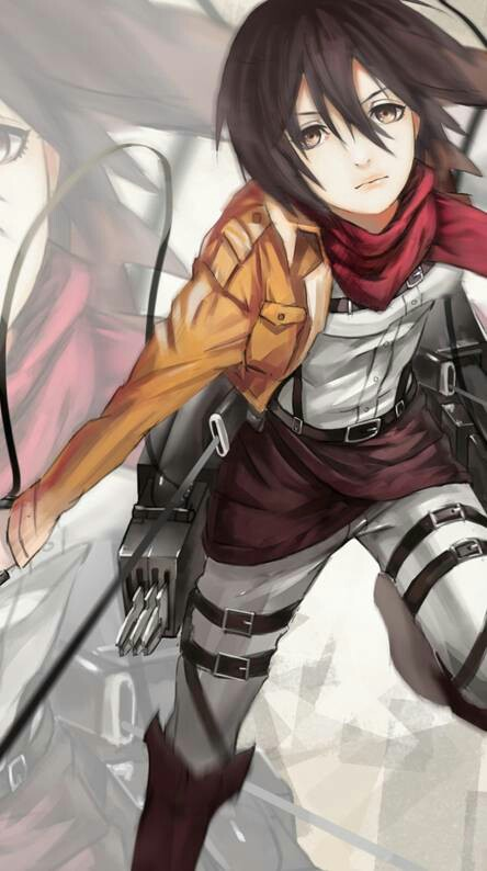 Who does Mikasa like?