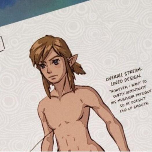 Publican foto de Link desnudo; carencia de zona genital escandaliza a fanáticos