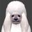 ThrowingOutRoX's avatar