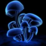 KeapBrit's avatar