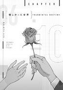 Light Novel Volume 10 World