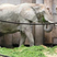 Gaven love's animals 2004's avatar