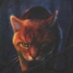Ombre d'Érable41's avatar