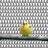 Scoot the Birbs's avatar