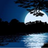 Avatar de Luna sobre el rio
