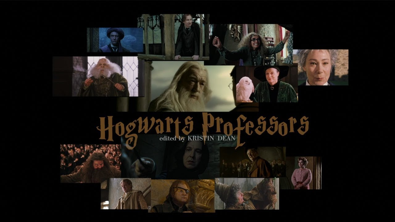 Harry Potter   Hogwarts Professors - edited by Kristin Dean