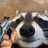 Kimonodva's avatar