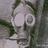 JeromeZP's avatar