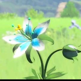 Zelda The légende's avatar
