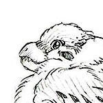 RinasaurusRex/Draft:S2 template