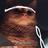 Ashi-nyan's avatar