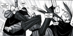 You do realise the next 100 pages will be Fei beating up these guys, don't you?