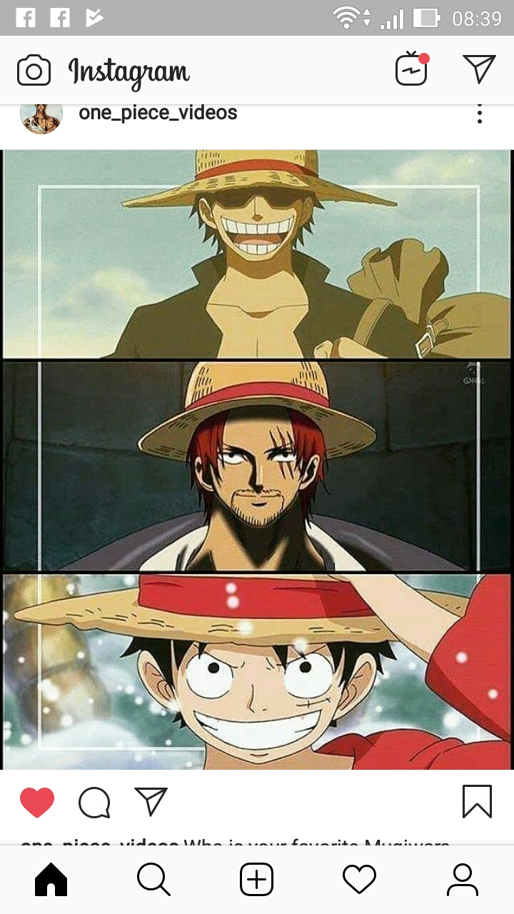 Grupo sobre one piece
