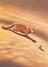 Zandstorm46's avatar