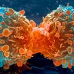 Cancer-cell-3759's avatar