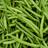 Greenbeanl0rd's avatar