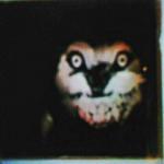 KaitiShineSalyers's avatar