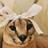 Sadkori's avatar